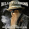The Big Bad Blues / Billy Gibbons