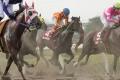 180718 地方競馬ジョッキーズCS 2ndステージ-06