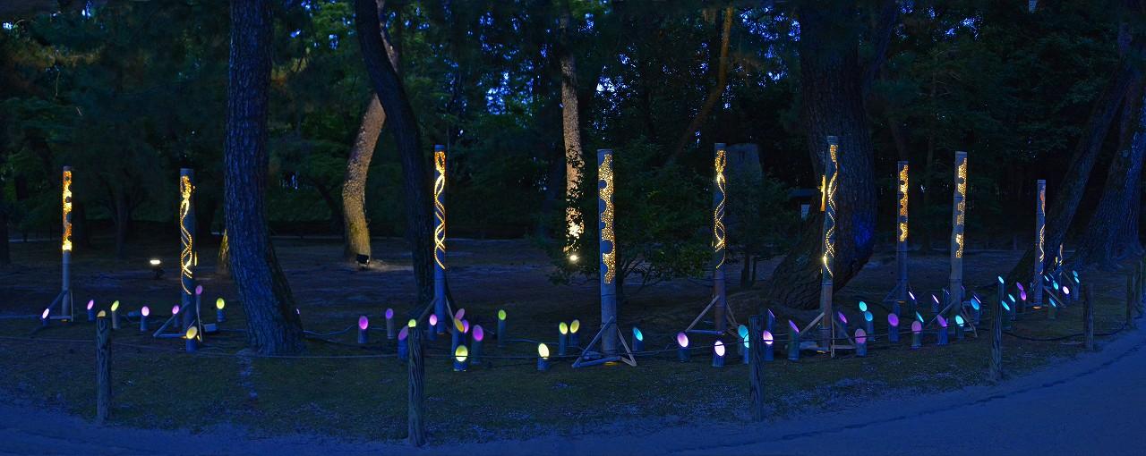 20180807 後楽園夏の幻想庭園松林の竹灯篭オブジェのワイド風景 (1)