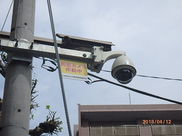 P4120060.jpg