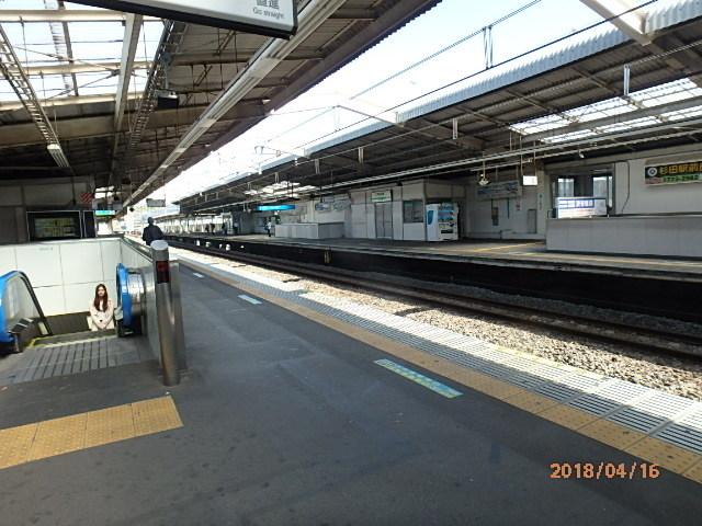 P4160167.jpg