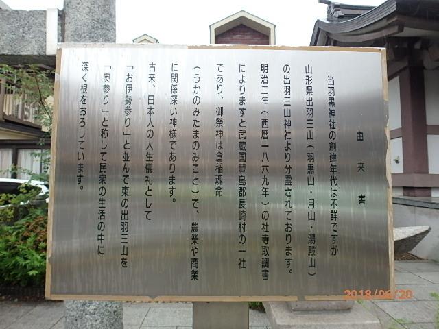 P6200139.jpg