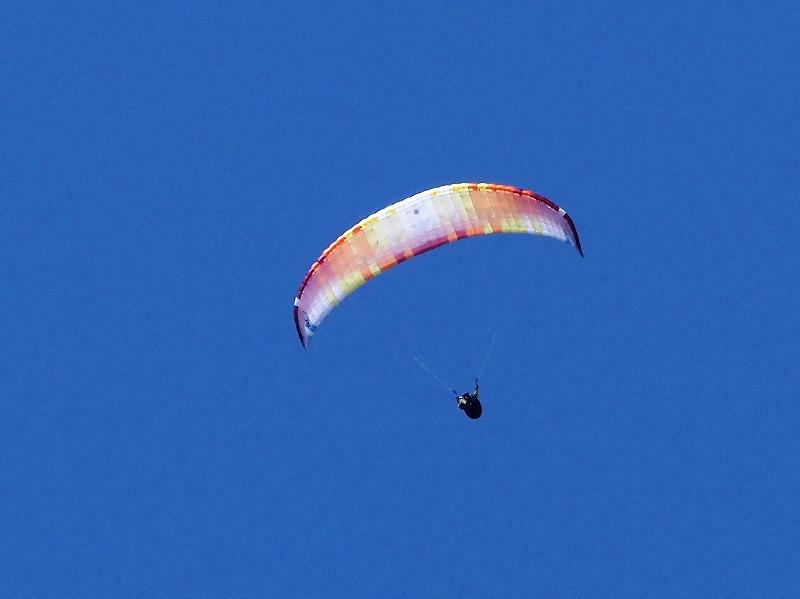 パラグライダー1