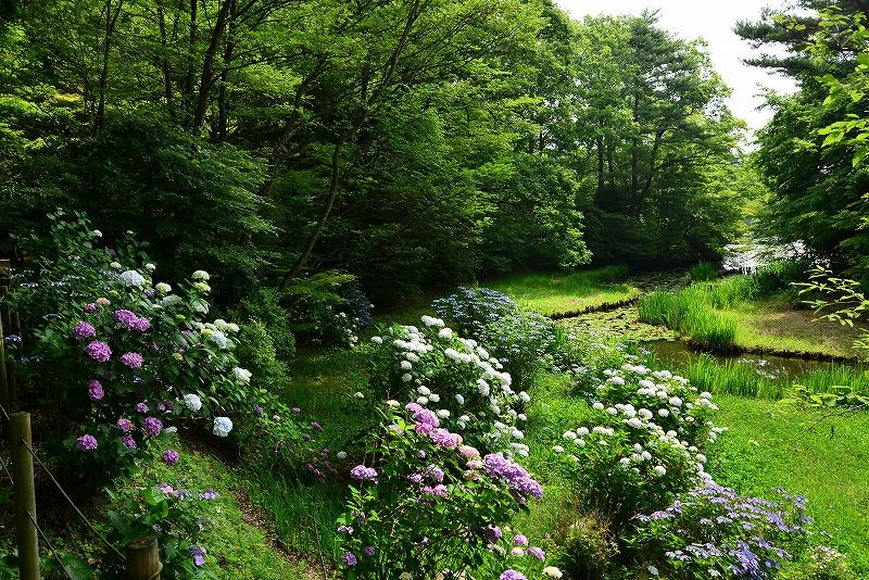 三景園12