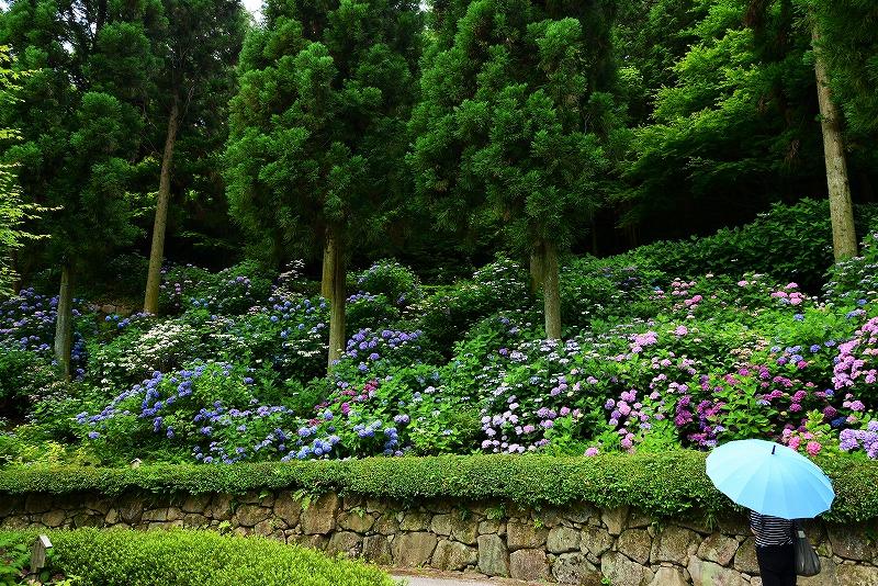三景園25
