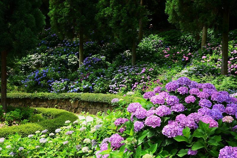三景園23
