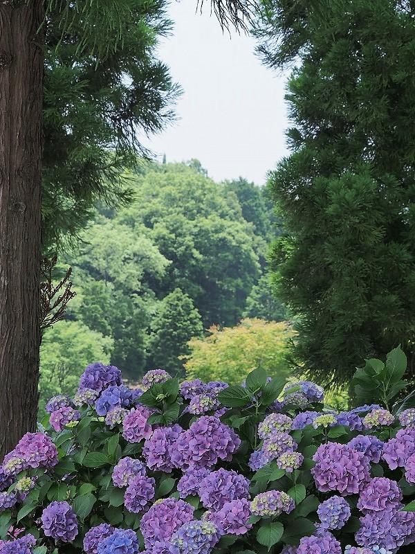 三景園31