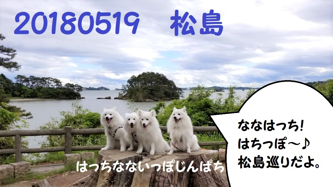 20180519_151619.jpg