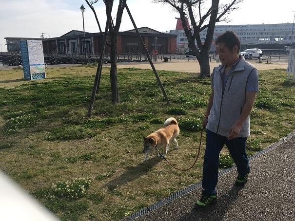 15散歩~♪