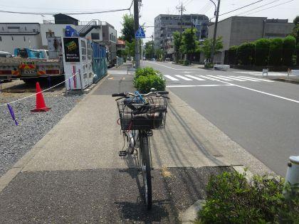 mini_DSC08497.jpg