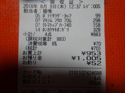 mini_DSC08838.jpg