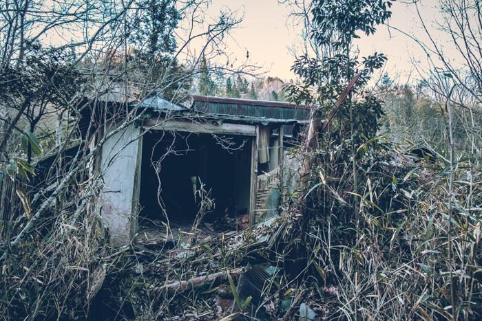 20180703_abandoned_kewpie_house_1.jpg