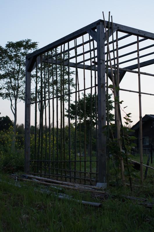 房総フィールド パーゴラの竹垣修復 新しい支柱