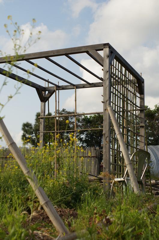 竹垣づくり 側面完成