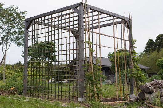 房総フィールド パーゴラの竹垣背面に着手