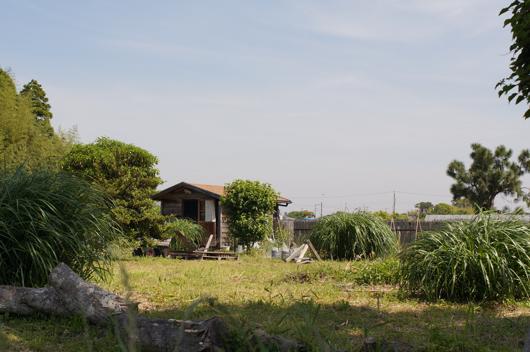 五月の小屋