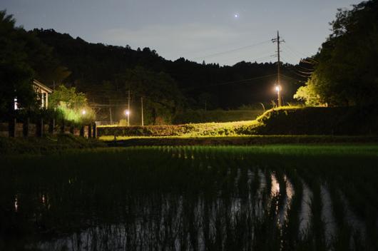 房総夜景 田んぼの夜