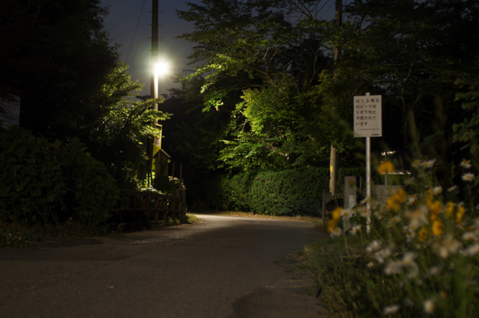 房総夜景 夜の小道