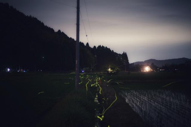 房総 蛍の光