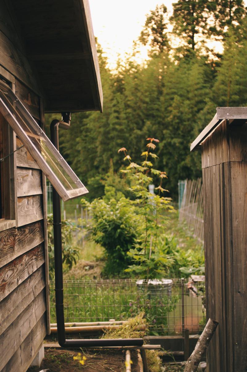 夕暮れどきの小屋