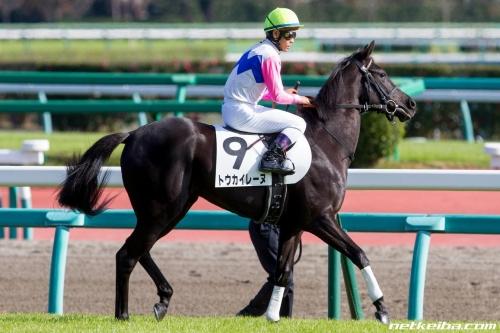【競馬】ディープインパクト産駒、史上最速のJRA通算1600勝達成
