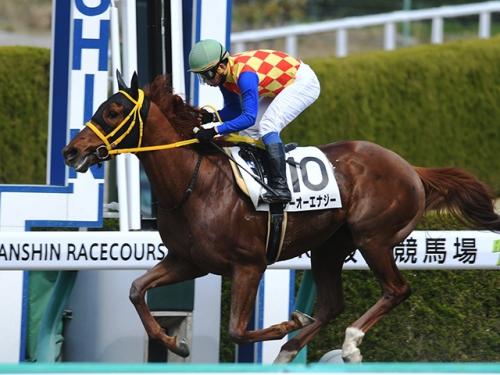 【日本ダービー2018】テーオーエナジー、ダービー参戦決定 鞍上は藤岡康太