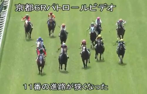 【競馬】審議になった京都6レースのラセットの動き方ワロタwwww
