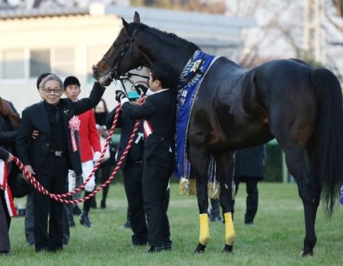 【競馬ネタ】北島三郎がロードカナロア産駒を4200万円で落札