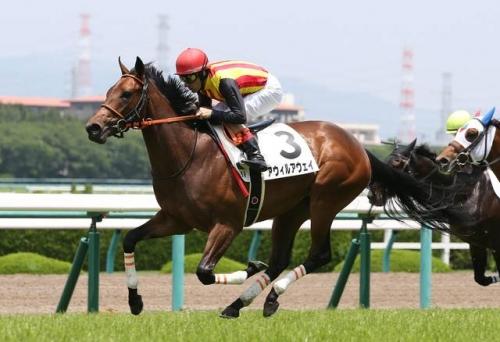 【競馬】2018年新種牡馬産駒が初勝利!阪神5Rでジャスタウェイ産駒アウィルアウェイが1着