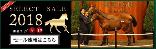【競馬】良い馬は庭先やクラブに回されるのに、なぜセレクトセールで高額馬を買う馬主はいなくならないのか?