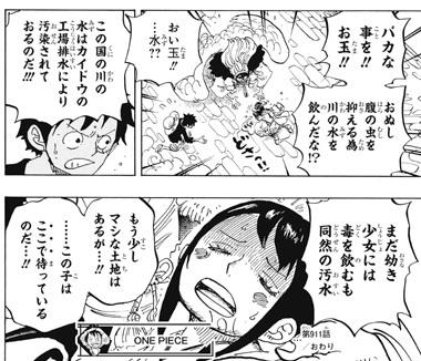 ワンピース911話ネタバレ感想(11)