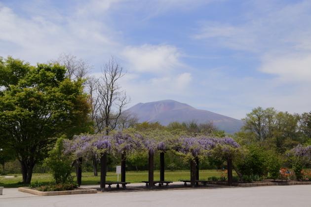 2018年5月 軽井沢