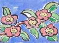 3珍花猫の花