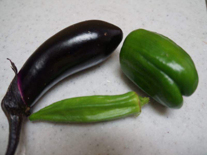 今年の初物野菜