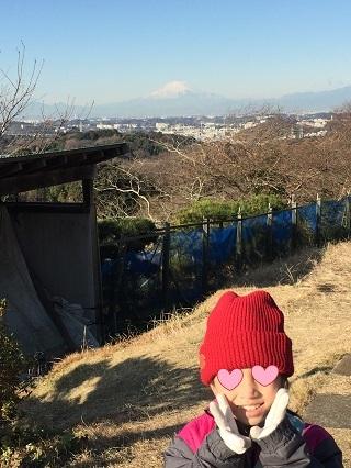 円海山ハイキングコース富士山