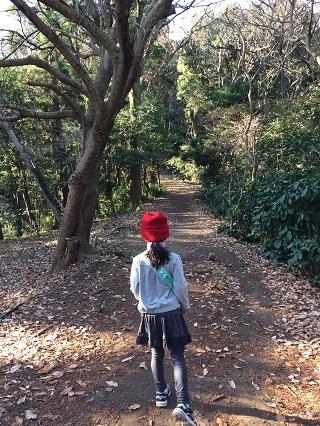 円海山ハイキングコース子供