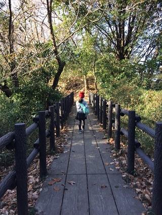 円海山ハイキングコース橋