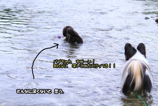 釜ヶ淵公園水遊び00057035
