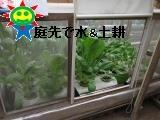 IMG_0388_convert_20180802105443.jpg