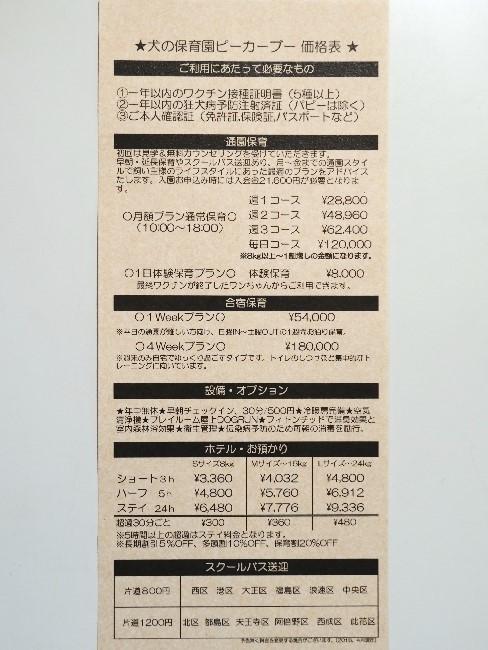 20180712-1 (23)