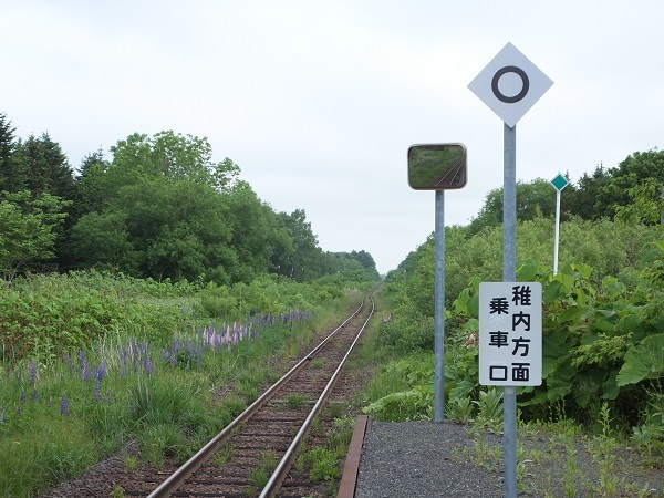tokumitu (7)