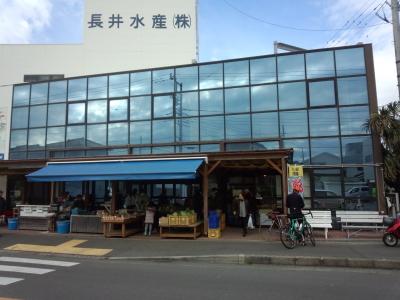 三浦半島サイクリング
