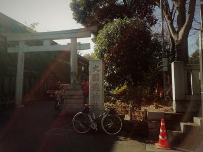 photo_randner_sinagawamiti_0203_1_2019_.jpg