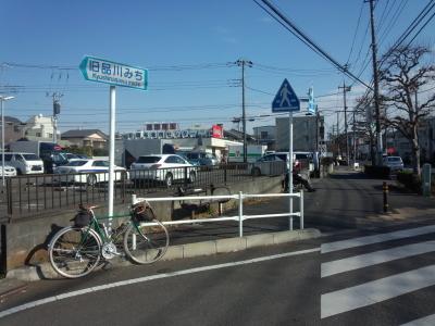 photo_randner_sinagawamiti_0203_6_2019_.jpg