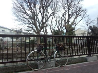 photo_randner_sinagawamiti_0216_39_2919_0216.jpg