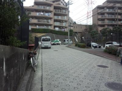 photo_randner_takaitokoro_14_2019_0226.jpg