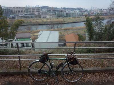 photo_randner_takaitokoro_15_2019_0226.jpg