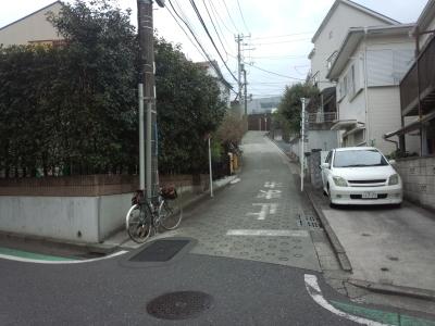 photo_randner_takaitokoro_6_2019_0226.jpg