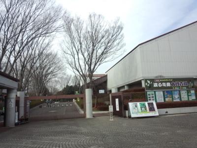 photo_randner_tamagawakofunmeguri_2_2_2019_0130.jpg