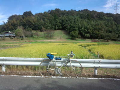 鶴見川と長池公園